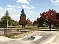 Skate - panoramio.jpg