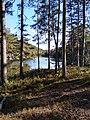 Skog och sjö i Tivedens nationalpark.jpg