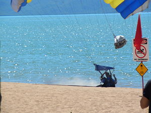 Skydivers landing on The Strand Townsville.JPG