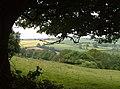Slopes of Foxdon Hill - geograph.org.uk - 1606669.jpg