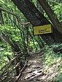 Snezhanka Cave 004.jpg