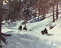 Snowmobiles in Coeur d'Alene National Forest 99-8075 (5880873579).jpg