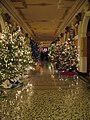 South Dakota Capitol Christmas trees 2.JPG