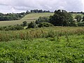 South from Barley Hill - geograph.org.uk - 481099.jpg
