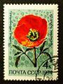 Soviet stamps 1974 4k Roemeria refracta.JPG