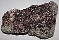 Sphalerite on dolostone (Millersville Quarry, Sandusky County, Ohio, USA).jpg