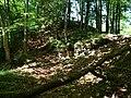 Spiegelberg Burgstelle Thundorf P1030241.jpg