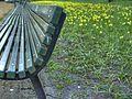 Spring (2406610947).jpg