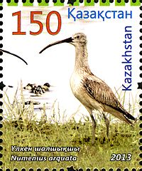 Stamps of Kazakhstan, 2013-63.jpg