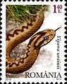 Stamps of Romania, 2010-40.jpg
