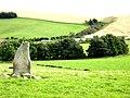 Standing Stone near Nether Wheedlemont - geograph.org.uk - 974879.jpg