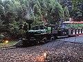 Stanley Park Miniature Train October 23, 2011.jpg