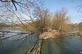 Staré Nechanice rybník Velký Lhoták spojovací hráz1.JPG