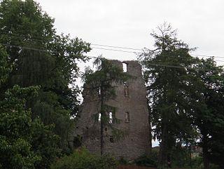 Starý Rybník (castle)