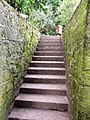 Steps, Oldway Mansion, Paignton - geograph.org.uk - 696702.jpg