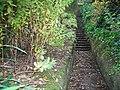 Steps - geograph.org.uk - 1533745.jpg