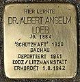 Stolperstein für Dr. Albert Anselm Loeb (Köln).jpg