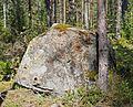 Stone in forest.jpg