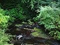 Stream, Cragside Estate - geograph.org.uk - 920132.jpg