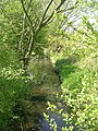 Stream - Rothwell Lane - geograph.org.uk - 1265726.jpg