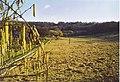 Sunray Farm, West Clandon. - geograph.org.uk - 140724.jpg