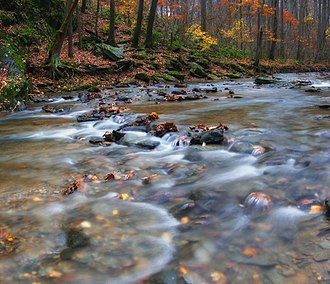 East Drumore Township, Lancaster County, Pennsylvania - Swift Run in the Theodore A. Parker III Natural Area