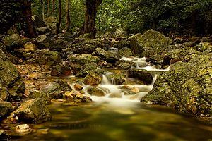 Ubbalamadugu Falls - Water flowing Downhill