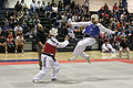 Tai Kwon Do competition, UCD.jpg