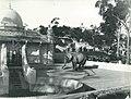 Taronga Park Zoo - 1916 (27018203651).jpg