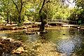 Tel-dan-wading-pool.JPG