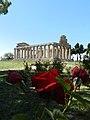 Tempio di Athena 016.jpg