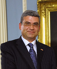 Teodor Baconschi 2011.jpg