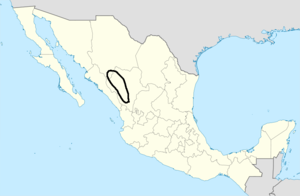 Tepuhuan location 1616.png