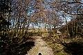 Texel - Maartenhuis - Nature Path 'Alloo' - View North III.jpg