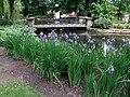 The Arboretum, Lincoln - geograph.org.uk - 822078.jpg