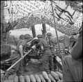 The British Army in Normandy 1944 B6295.jpg