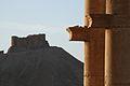 The Castle overlooking Palmra - Flickr - edbrambley.jpg