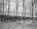 The German Spring Offensive, March-july 1918 Q8620.jpg