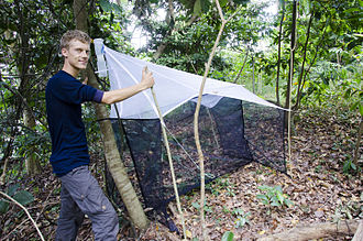 Malaise trap - Setting up a malaise trap in Udzungwa Mountains National Park