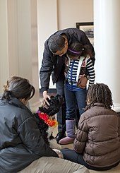 """The President, Barack Obama, shows his youngest daughter how to pet a small black dog whilst his oldest daughter and wife watch"""