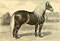 The breeds of live stock, and the principles of heredity (1887) (14758186536).jpg