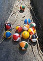 The game of Barberi, small wooden balls with colors of the contrade of 'Palio di Siena', Italy.jpg