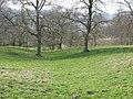 The north defensive ditch of Hadrian's Wall in Dixon's Plantation (3) - geograph.org.uk - 1267536.jpg