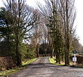 The track to Foxes Covert - geograph.org.uk - 308536.jpg