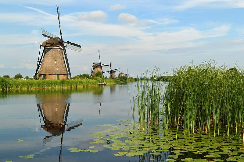 File:The windmills of Kinderdijk.JPG