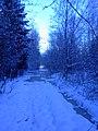 The winter path. The pools. November 2013. - Тропинка зимой. Лужи. Ноябрь 2013. - panoramio.jpg