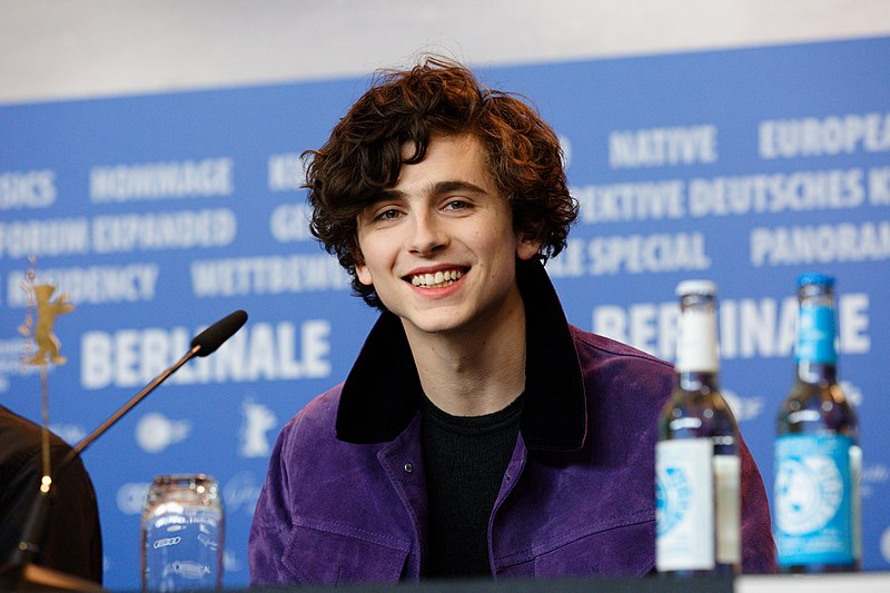 File:Timothée Chalamet Call Me By Your Name Press Conference Berlinale 2017.jpg