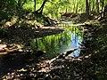 Tischer Creek Pool, Duluth (9881087016).jpg