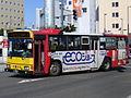 Tokachi bus O022C 0312.JPG