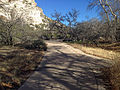 Trail in Montezuma Castle NM.JPG